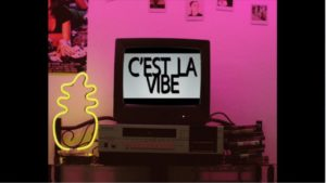 "Follow the Protocol: Raiden & Tom Tyger's ""C'est Le Vibe"""